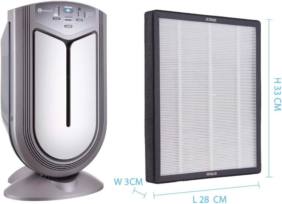 Reemplazo Hepa y filtro de carbón para NaturoPure y Intelli-Pro ...