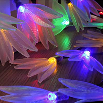 NLGToy Colorful 20 LED Christmas Decorative Lights Solar Energy Lights Wedding Lamp, Outdoor Saint Valentine's Day Lights for Patio, Lawn, Home, Garden, Wedding, Party Decorations (Clear): Sports & Outdoors