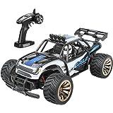 Distianert RC Auto Electric RC Telecomando per Auto su Fuori strada RTR Furgone Monster con Vettura RC 1:16 2WD 2.4Ghz Batteria Ricaricabile ad Alta Velocità