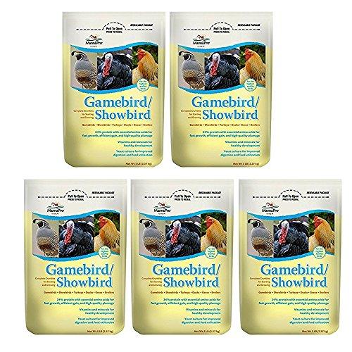 (Manna Pro Gamebird Showbird Crumbles, 5 lb (5 pack))