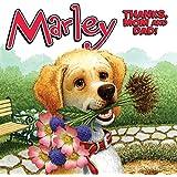 Bad dog marley john grogan richard cowdrey 9780061171161 marley thanks mom and dad fandeluxe Image collections