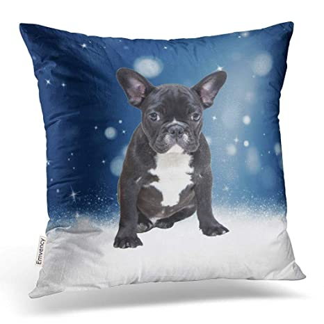 Amazon.com: emvency Throw funda de almohada dec Xmas Cute ...