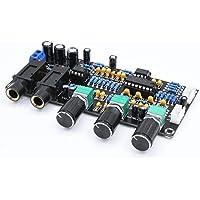 MXECO XH-M273 PT2399 Amplificadores de micrófono digital Tablero