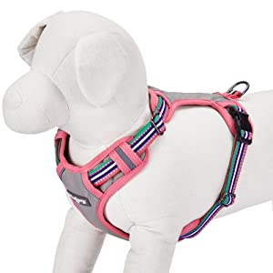 Blueberry padded dog harness