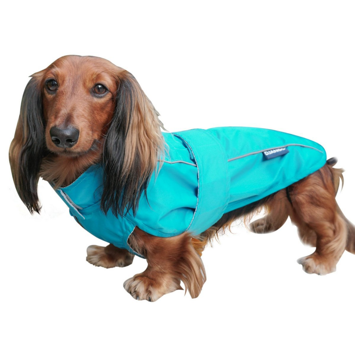DJANGO City Slicker Water-Repellent Dog Raincoat and All-Weather Jacket with Reflective Piping (Small, Topaz Blue)