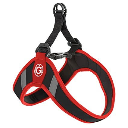 Amazon.com : Gooby Simple Step in Dog Harness with Reflective Lining
