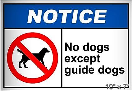 amazon com no dogs except guide dogs notice osha ansi aluminum rh amazon com ANSI Z535 ANSI Z535
