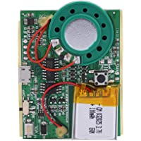 Re-recordable USB Music Sound Voice Recording Player Chip Module 1W with Rechargeable Lithium Battery for DIY Cards/Toys - Easy to Record- 480 Second Recording(Button Control)