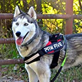 Paw Five CORE-1 Reflective Dog Harness with Built-in Waste Bag Dispenser Adjustable Padded No-Pull Easy Walk Control for Medium and Large Dogs, Check Sizing Chart Before Ordering (Medium, Lava Red)