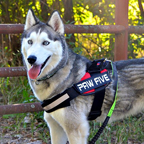 Paw Five CORE-1 Reflective Dog Harness with Built-in Waste Bag Dispenser Adjustable Padded No-Pull Easy Walk Control for Medium and Large Dogs, Check Sizing Chart Before Ordering (Small, Lava Red) ()