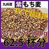 南部吟右衛門 希少国産 紫もち麦 無農薬 (500g)