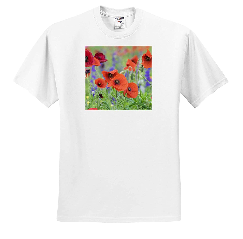 ts/_314960 Mount Olive 3dRose Danita Delimont Flowers Poppy Field North Carolina Adult T-Shirt XL USA