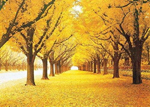 Prow Stained Art Wooden Jigsaw Puzzles, 1000 Piece, Finish Size 30''x20'', Autumn Yellow Forest Landscape Scenery