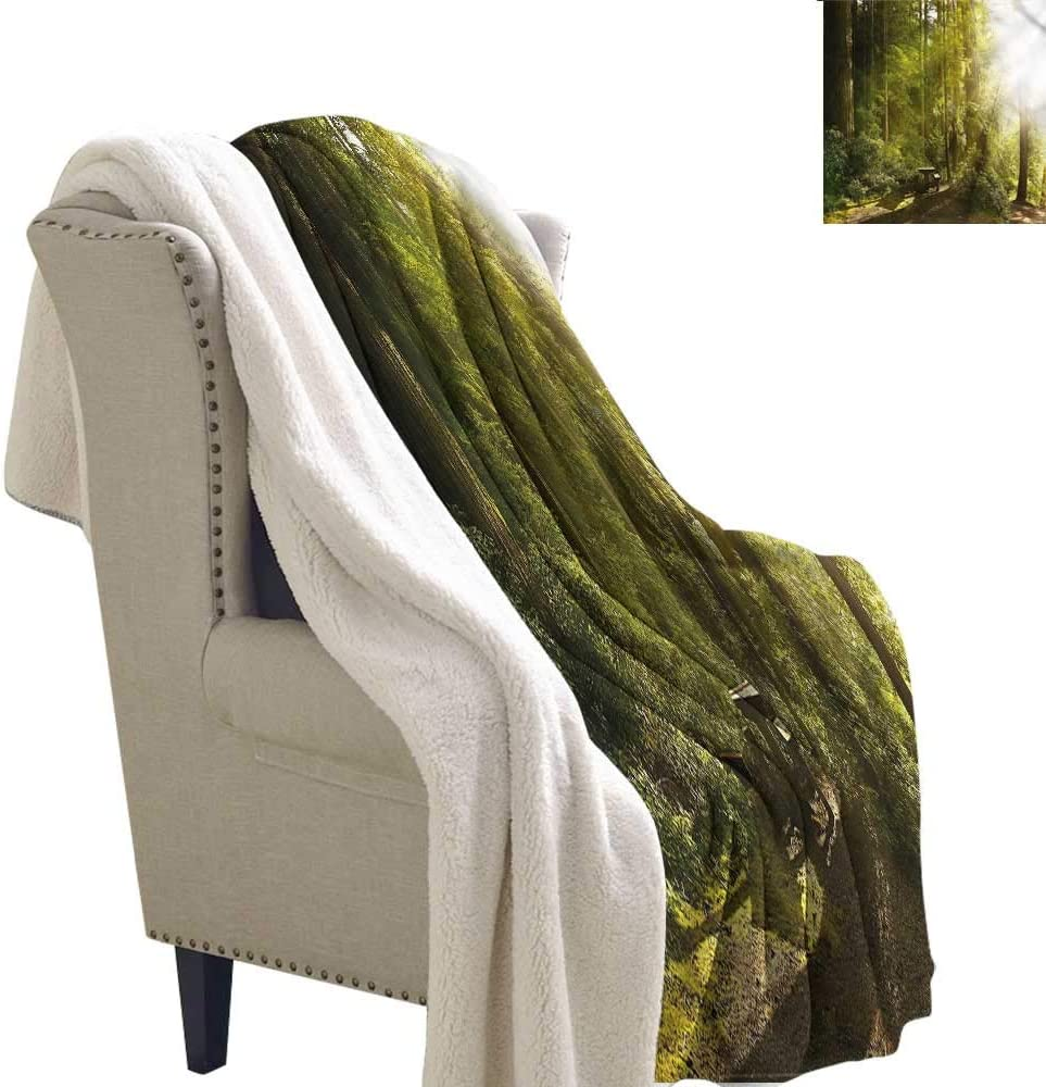 Baby Blanket Nature Sunny Day Fresh Leaves Stems Autumn and Winter Thick Blanket W59 x L47