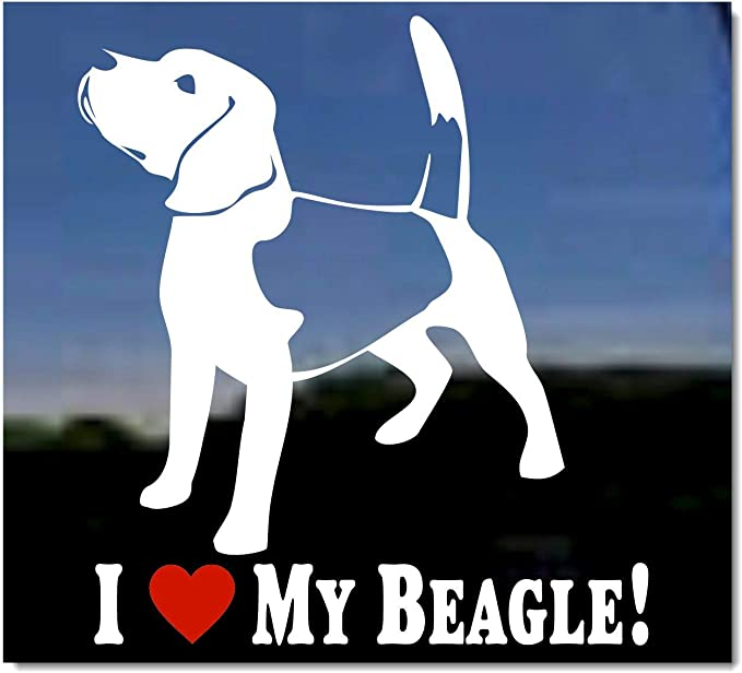 Love Beagle Dog Heart ebn1422 Multiple Patterns /& Sizes Decal Sticker