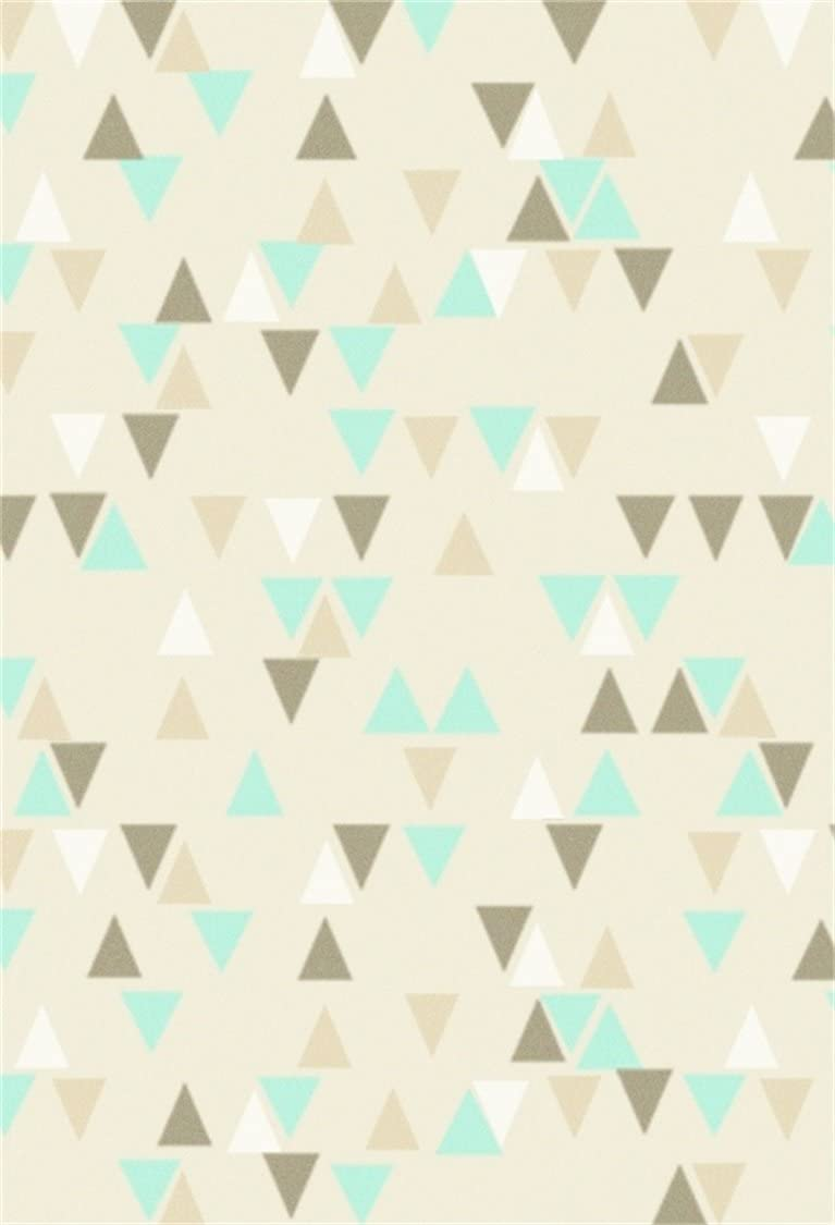 Retro Pattern Arrow Triangle Shape Simple Minimalist Geometric Artwork Background for Baby Shower Birthday Wedding Bridal Shower Party Decoration Photo Studio Arrows 6x8 FT Photography Backdrop