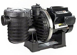 Sta-Rite P6E6VS4H-209L IntelliPro Variable Speed pump