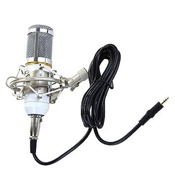 perfk Micrófono PC Micro Profesional con Condensador Podcasting ...
