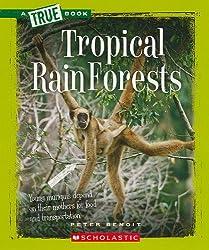 15 fantastic facts about rainforests!