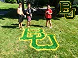 BAYLOR UNIVERSITY LAWN STENCIL KIT - PAINT THE BEARS LOGO ON YOUR YARD - LAWN -TAILGATE - FOR THE BIGGEST FAN - REUSABLE STENCIL AND PAINT