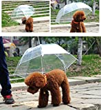 H.YOUNG Transparent Pet Umbrella Leash For Raining - Dog Gift