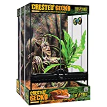 Exo Terra PT3778 Crested Gecko Kit, Small