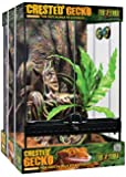 Exo Terra PT3778 Crested Gecko Kit, Small