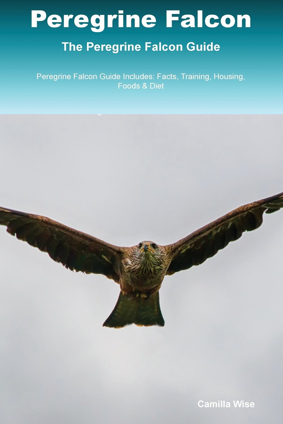 Peregrine Falcon The Peregrine Falcon Guide Peregrine Falcon Guide Includes: Facts, Training, Housing, Foods & Diet