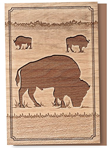 Tree-Free Greetings EcoNotes 12-Count Notecard Set With Envelopes, 4 x 6 Inches, Buffalo Woodcut Themed Wildlife Art (56113)
