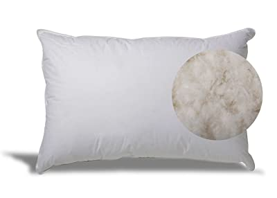 ExceptionalSheet Extra Soft Down Pillow review