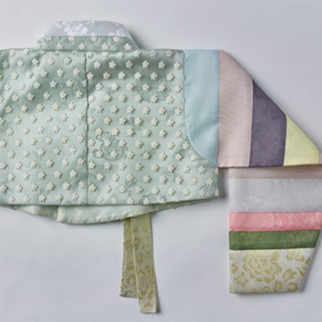 8eb1b83cd Amazon.com: Korean Beautiful Girl's Traditional Clothing Hanbok Dress Baby  Girl Clothes Birthday New Year Party Jung-Won: Clothing