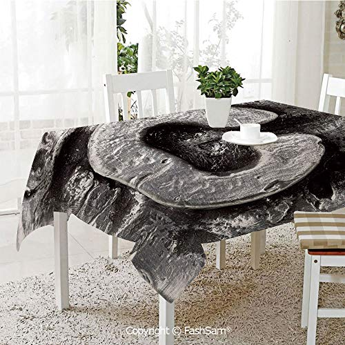 AmaUncle Premium Waterproof Table Cover Fused Elements Aluminum Style Minuscule C Words First Name Theme Background Artwork Decorative Resistant Table Toppers (W60 -