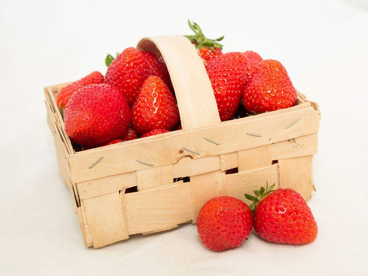 Erdbeer Anbau-Set L: 40 Erdbeerpflanzen inkl D/ünger Korona Anbau-Set mit 40 Erdbeergr/ünpflanzen 4 Erdbeersorten: Daroyal Langzeitd/ünger f/ür Erdbeerpflanzen Sonata /& Florence Erdbeerprofi