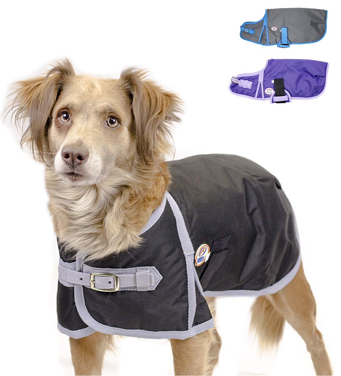 Derby Originals Horse Tough 600D Waterproof Ripstop Dog Coat with 1 Year Warranty - Medium Weight 150g Polyfil & No Rub Breathable Lining  - Solid Design in Multiple Colors & Sizes