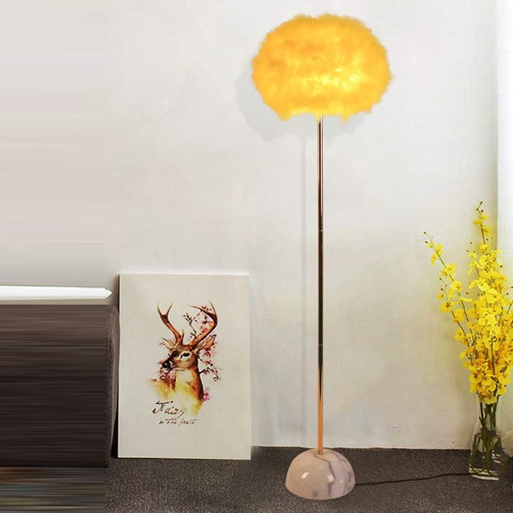 Color : Pink BTPDIAN Feather Floor lamp Living Room Warm Fashion Bedroom Study Bedside lamp Modern Minimalist Fishing lamp