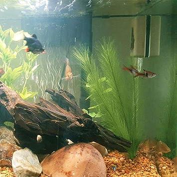 Oshide acuario Decoraciones 3 piezas Plantas de peces hechas de telas de seda Plástico, no tóxico y seguro para todos los peces y mascotas Tanque Agua ...