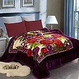 JML Heavy Fleece Blanket King(85'x93', 10lbs) Korean 2 Ply Blanket Soft Warm Thick Korean Mink Printed Plush Fleece Blanket Asian Mink Raschel Bed Blanket for Autumn,Winter,Bed,Home,Gifts
