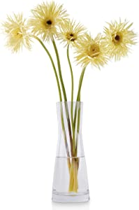 Clear Glass Vase for Flowers, W.Sealet Floral Vase for Decor 10.2 Inch Modern Home Decor Corset Shape Crystal Clear Simple Flower Vase for Wedding Centerpieces, Living Room, Kitchen, Office