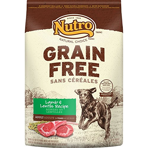 food health nutro grain free adult natural chicken lentils sweet potato