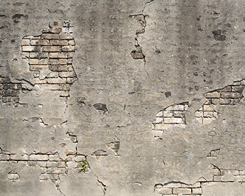 Wall Rogues WR50520 Broken Concrete Wall Mural