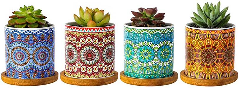 "winemana Mandala Style Succulent Plant Pots, 3"" Modern Cylinder Colorful Ceramic Planter for Cactus with Drainage Hole and Bamboo Trays, Set of 4"