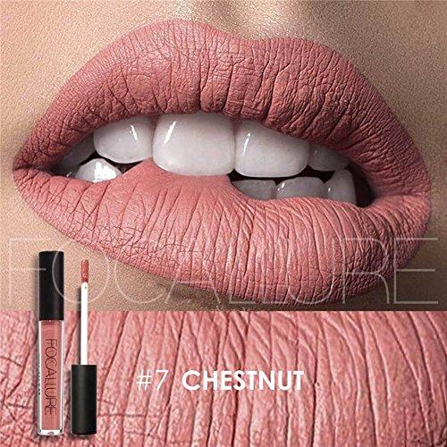 Focallure Matte Lipstick Lipgloss Womens Makeup Stay On Glossier Lip Gloss Long Lasting Colorstay Liquid Waterproof Lip Stick Chestnut