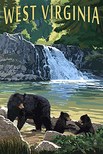 West Virginia - Waterfall and Bears (9x12 Art Print, Wall Decor Travel Poster)