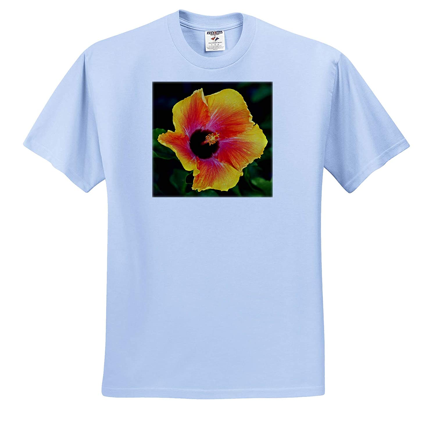 3dRose Stamp City - T-Shirts Photograph of astunning Tropical Hibiscus Flower from Our Garden Flowers