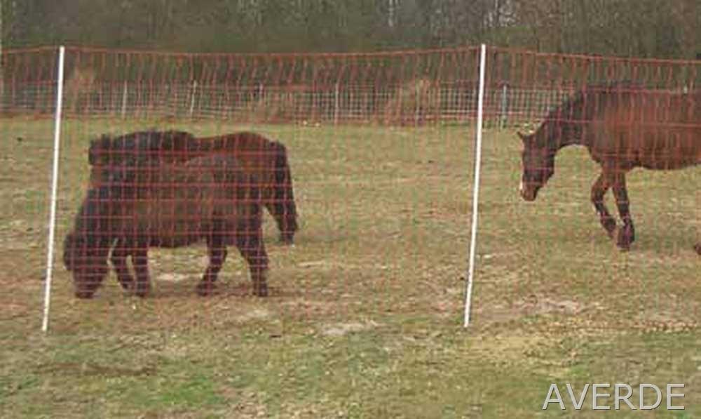 Pferdenetz, Weidezaunnetz, Mustang - Netz, 145 cm x 50 m
