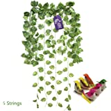 Asian Hobby Crafts Artificial Creepers Money PlantLeaves for Home Decor, Wall Hanging, Garden Decor– 5 Strings (7ft Each) with 6 pcs Artificial Birds