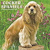 Just Cocker Spaniels 2018 Calendar