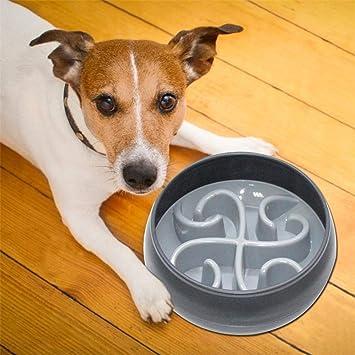 PINJUM Dog Bowls Slow Feeder Fun Stop Bloat Dog Bowl Pet Non-Slip Drink Water Bowl Square Base