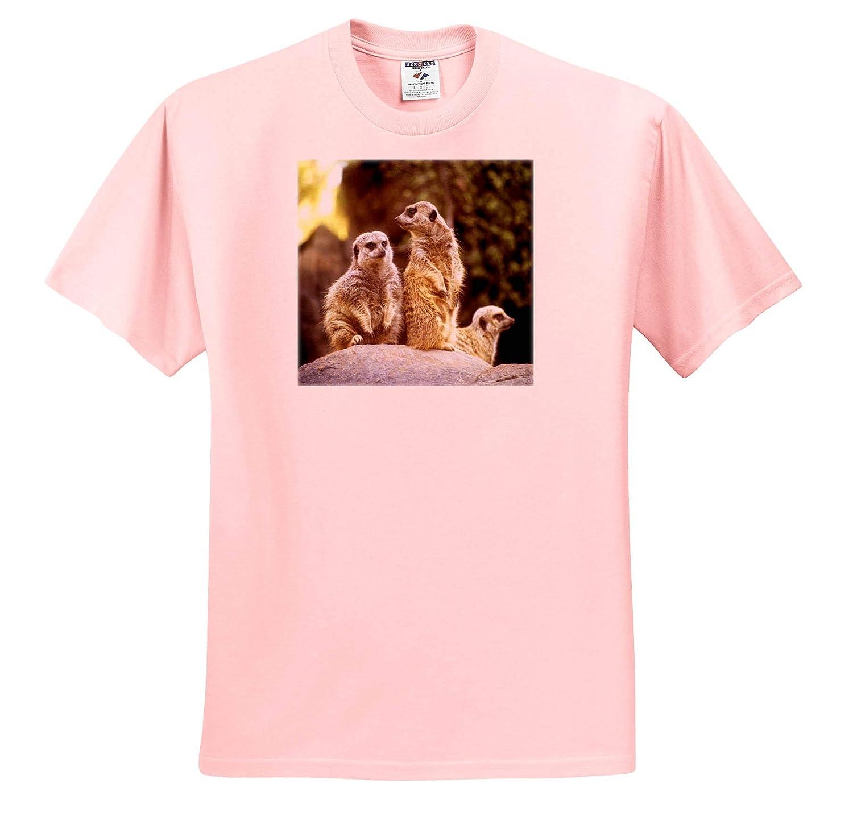 Act Natural Meerkats Bob They are Staring at us Again T-Shirts Animal 3dRose BlakCircleGirl Act Natural
