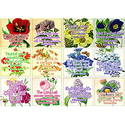 Christian Stickers for Women Series 5 (5-Sheet) - Great Variety Colorful Stickers : Office Products